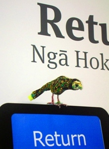 Photo of kakapo replica