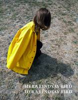 Cover of Hera Lindsay Bird