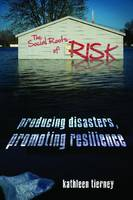 Cover of The Social Roots of Risk Producing Disasters, Promoting Resilience